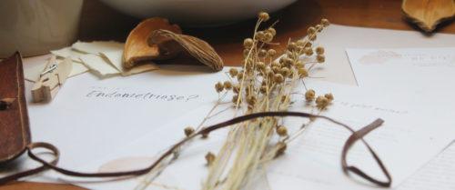 Mein Endometriose Journal