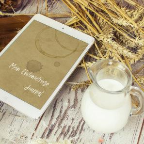 Mein Endometriose Journal // Digitale Version