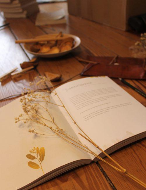 Endometriose Journal
